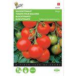 graines de Tomate Pour Balcons Maja