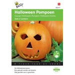Graines de Courge Halloween