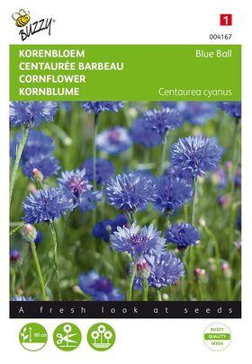 Centaurée Barbeau Blue Ball