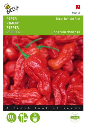 Piment Bhut Jolokia Rouge