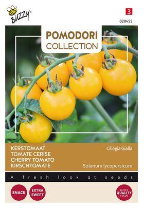 Tomate Pomodori Ciliegia Gialla