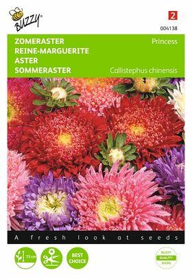Graines de fleurs Reine-Marguerite Princess