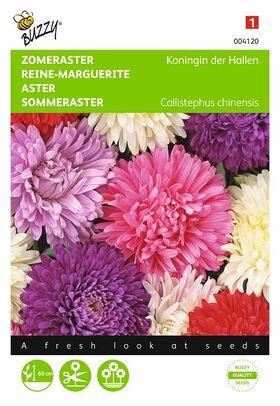Reine-Marguerite Reine Des Halles