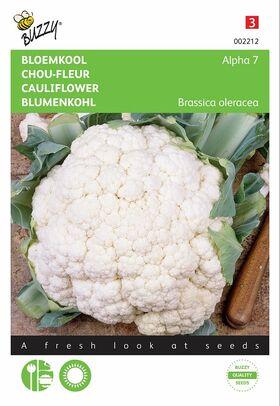 Graines de Chou-Fleur Alpha
