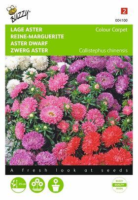 Graines de fleurs Reine-Marguerite