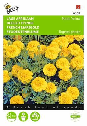 Graines de Œillet d'Inde Petite Yellow