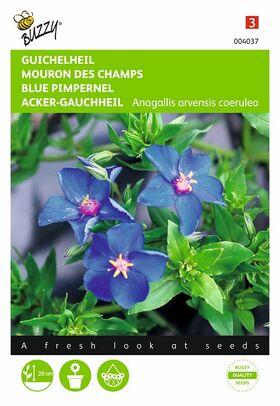 Graines de fleurs Mouron Des Champs