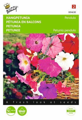 Semences de Fleurs Pétunia