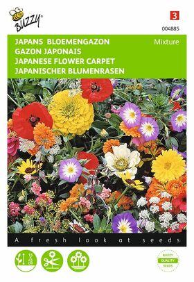 graines de fleurs Gazon Japonais
