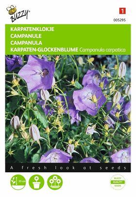 Graines de fleurs Campanule Carpatica