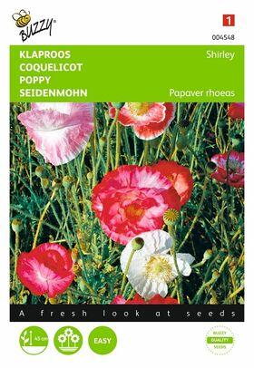 Graines de fleurs Coquelicot