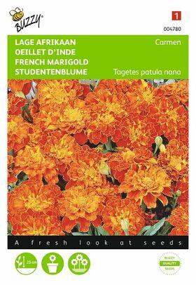 Graines de fleurs Œillet d'Inde Carmen