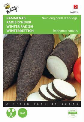 Graines de Radis D'Hiver Noir Gros Long