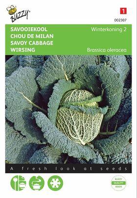 Graines de Chou de Milan