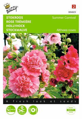 Semences Rose Trémière
