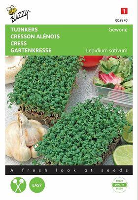 Graines de Cresson Alénois Commun