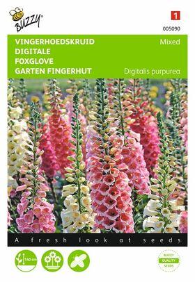 Graines de Digitale
