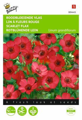 Graines de Lin À Fleurs Rouges