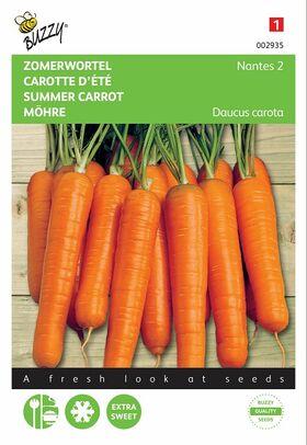 graines de Carottes Nantes