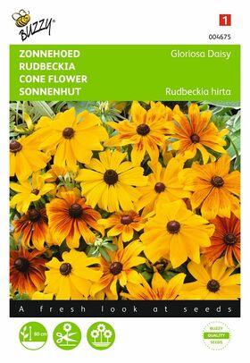 Graines de Fleurs Rudbeckia