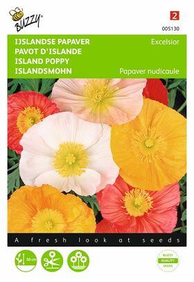 Grianes de fleurs Pavot d'Islande