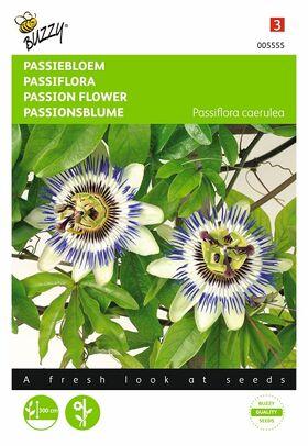 Graines de fleurs Passiflore