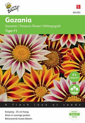 Graines de Fleurs Gazania