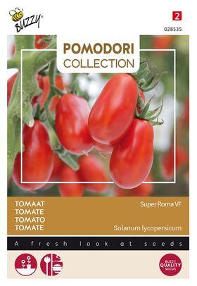 Tomate Pomodori Super Roma VF