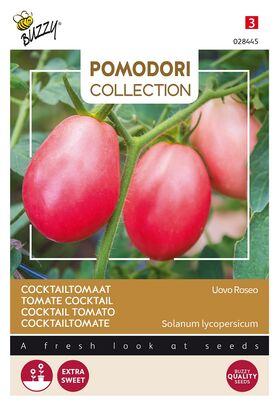 Tomate Pomodori Uovo Roseo