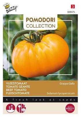 Tomate Pomodori Grappa Gialla