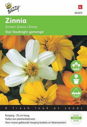 Graines Zinnia Starbright