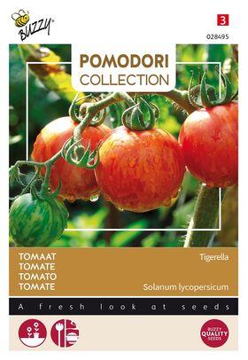 Tomate Pomodori Tigerella
