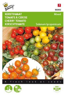 Tomates À Cerise En Mélange
