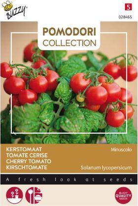 Tomate Pomodori Minuscolo