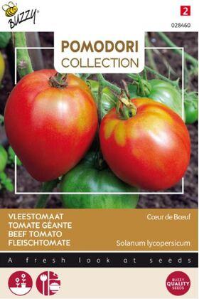 Tomate Pomodori Cuor Di Bue