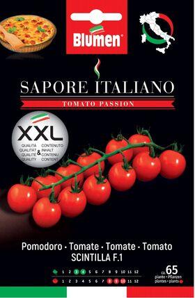 Pomodori Tomaten Scintilla F1